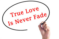Hand writing True Love Is Never Fade on transparent board.  Stock Photos