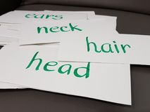 Hand written flashcards. On parts of the body Royalty Free Stock Photos