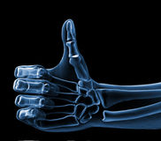 Hand xray royalty free illustration