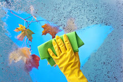 Hand in  yellow rubber glove cleaning window Stock Photo