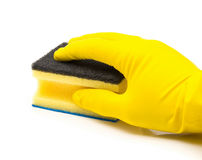Hand with yellow rubber glove holding cleaning sponge Stock Image