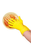 Hand in yellow rubber glove washing dirty plate isolated on whit Royalty Free Stock Image