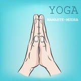Hand in Yoga mudra Namaste-Mudra Stockfotos