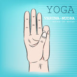 Hand in yoga mudra. Varuna-Mudra Stock Photo