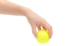 Hand of young girl holding tennis ball. Stock Image