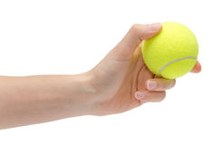 Hand of young girl holding tennis ball. Royalty Free Stock Image