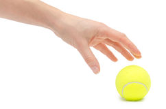 Hand of young girl holding tennis ball. Royalty Free Stock Photo