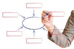Hand zeichnet ein Diagramm, das auf einem Weiß getrennt wird Stockfotografie