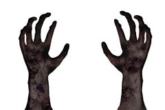 Hand of zombie. Hands of zombie on white background Royalty Free Stock Photography