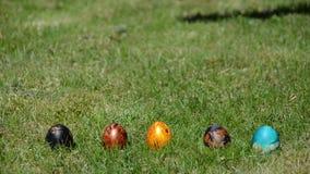Handaftelprocedure om paaseispel te beginnen Broodjes kleurrijke eieren stock video