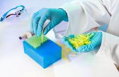 Handarbeid in het laboratorium Stock Fotografie