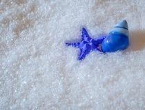In Handarbeit gemachte blaue Starfish und blaues Schneckenhaus im frischen Schnee Lizenzfreies Stockbild