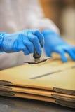 Handarbetare knyter den rubber stämpeln Royaltyfria Bilder