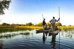 Handböcker som gör Okavango, snubblar med Dugoutkanoten i Botswana Royaltyfria Bilder