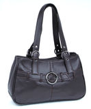 Handbag Stock Image