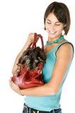 Handbag. Cute puppy inside a handbag Royalty Free Stock Photos
