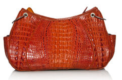 Handbag in crocodile leather Stock Images