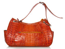 Handbag in crocodile leather Royalty Free Stock Photos