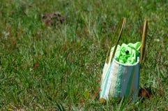 Handbag on grass Stock Photo