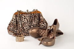 Handbag and shoes Royalty Free Stock Photo