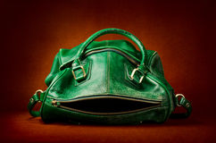 Handbag stylized as frog. Green leather women's handbag stylized as frog Stock Photography