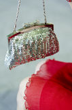 The handbag Royalty Free Stock Photography