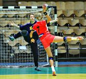handball Obraz Royalty Free