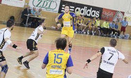 handball Obrazy Royalty Free