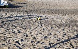 handball Stockfoto