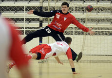 Handball bramkarz Obraz Royalty Free