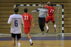Handball cel Obrazy Royalty Free