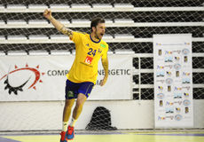 Handball Goal Celebration Stock Photo