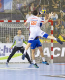 Handball player Nikola Karabatic Stock Photo