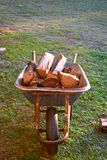 Old wheelbarrow full of woods on green grass. stock image
