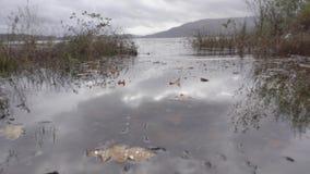 Handbediend schot die bij waterspiegel op de kust van Loch Shiel beginnen en tot zeer diep geschoten filteren stock videobeelden