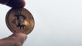 Handbediend schot van het gouden muntstuk van Bitcoin van de handholding op heldere achtergrond Ruimte voor tekst/titels stock videobeelden