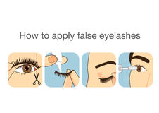 Handbokmoment till att applicera den falska ögonfrans Arkivfoton