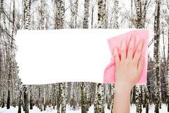 Handborttagnings gör bar träd i vinterskog vid trasan Arkivfoton