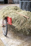 Handcart on a farm Stock Image