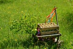 Handcart na zielonej łące w wiośnie na ojca dniu obraz stock
