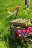 Handcart na zielonej łące w wiośnie na ojca dniu zdjęcie royalty free