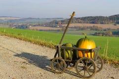 Handcart z dwa baniami w pogodnym krajobrazie fotografia stock