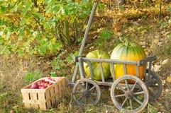 Handcart z dwa jabłkami i baniami zdjęcie royalty free