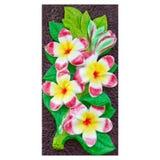 Handcraft του γλυπτού λουλουδιών plumeria ή frangipani στο άσπρο β Στοκ φωτογραφία με δικαίωμα ελεύθερης χρήσης