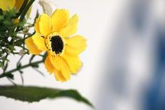 Handcraft la fleur photos libres de droits