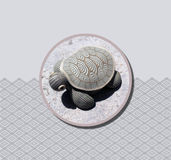 Handcraft Turtle Royalty Free Stock Photos