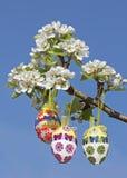 Handcrafted пасхальные яйца на ветви грушевого дерев дерева Стоковое Фото