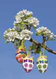 Handcrafted easter eggs on pear tree branch Stock Photo