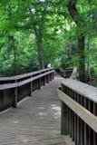 Handcrafted wood gångbana och stänger, i skogs- inställning Fotografering för Bildbyråer