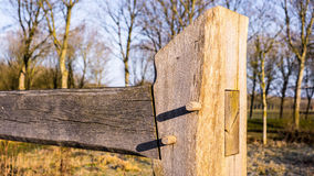 Handcrafted wooden fence with mortise and tenon joints. In the beautiful yellow morning sun with trees in and a meadow the distance. Standing on yellow grass Royalty Free Stock Image